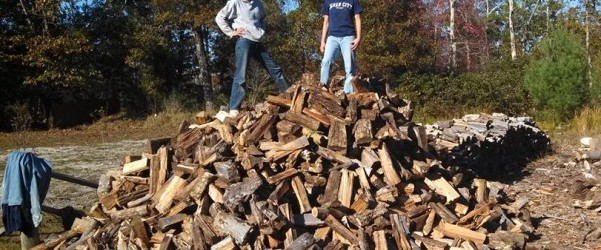 Shari, her friend, and a pile of chopped wood.