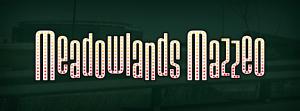 The banner gracing MeadowlandsMazzeo.com