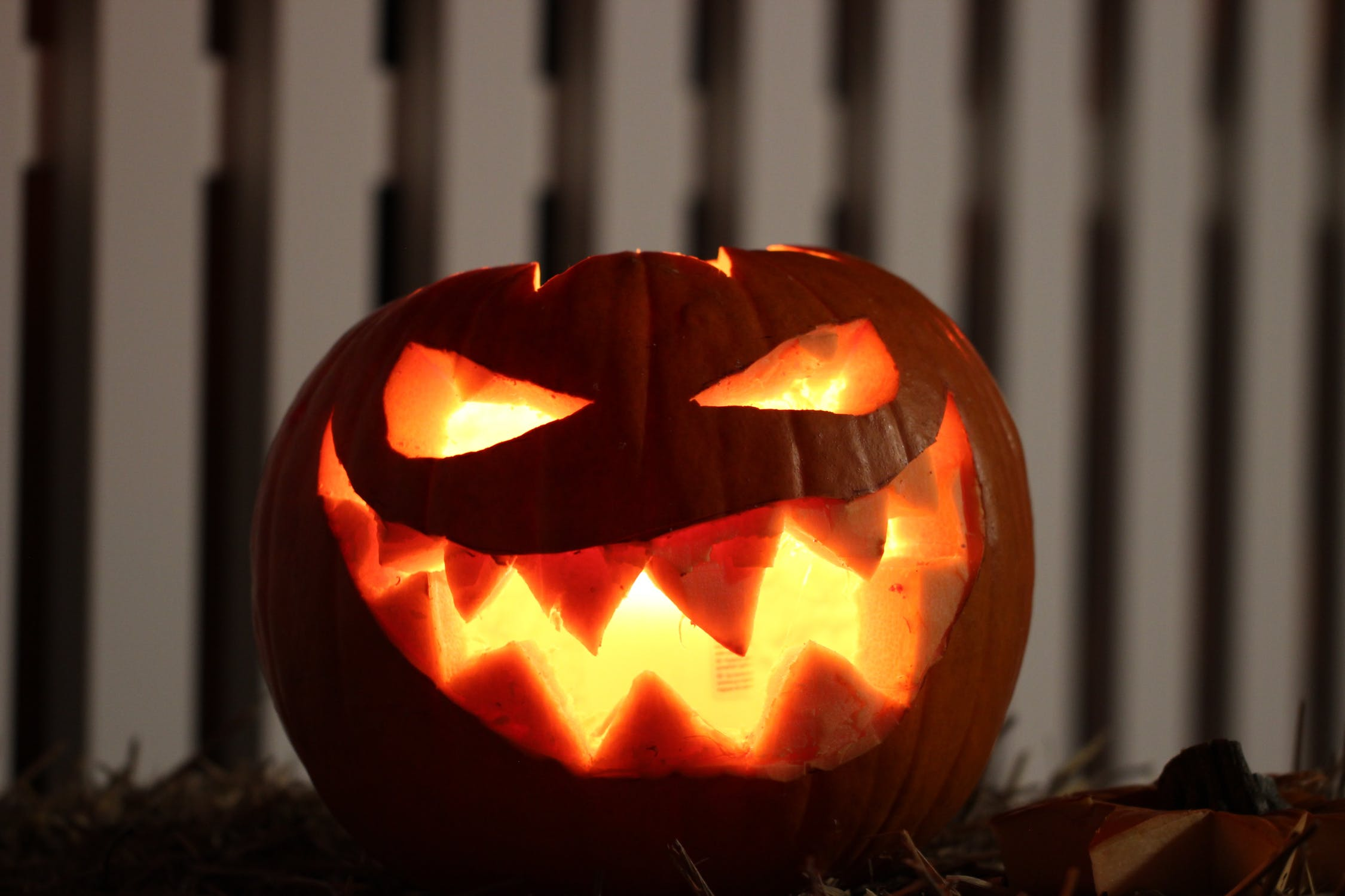 Murphy Administration: Your N.J. pumpkins are subject to sales tax!
